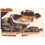 Friso pavo real - Augusta Bilbilis